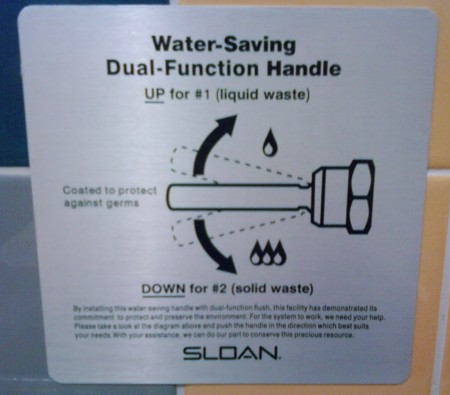 Dual-flush instructions